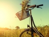 Bicycle in a field