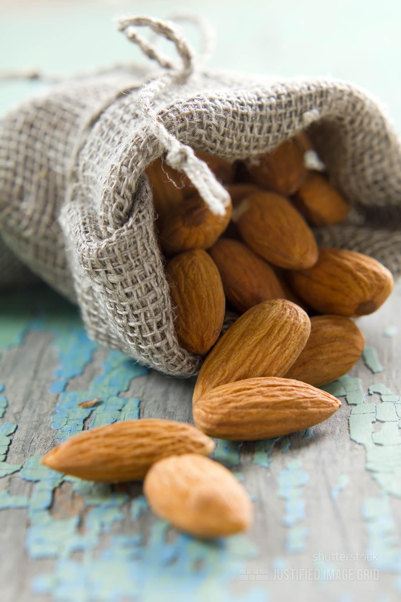 nuts Archives - Justified Image Grid - Premium WordPress Gallery